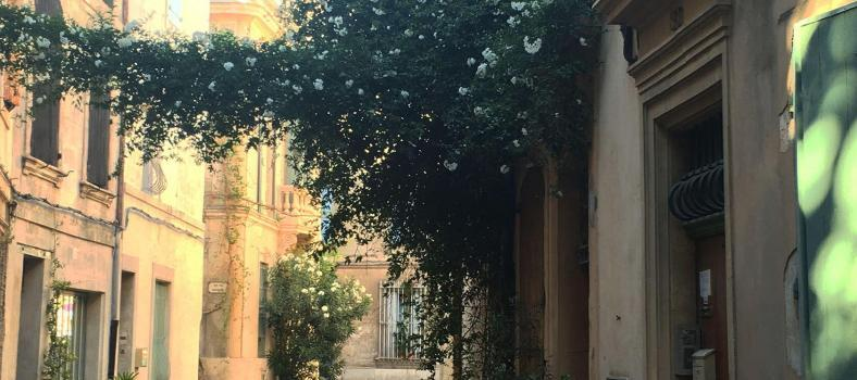 Arles Must-See Provence
