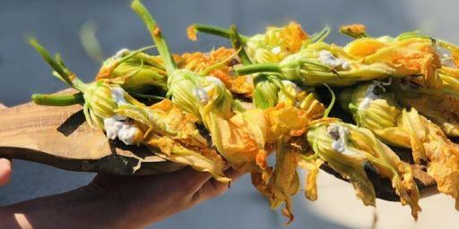 Stuffed Zucchini Flowers Recipe