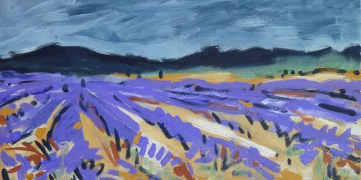 Lavender Fields Sault Miriam Hartmann