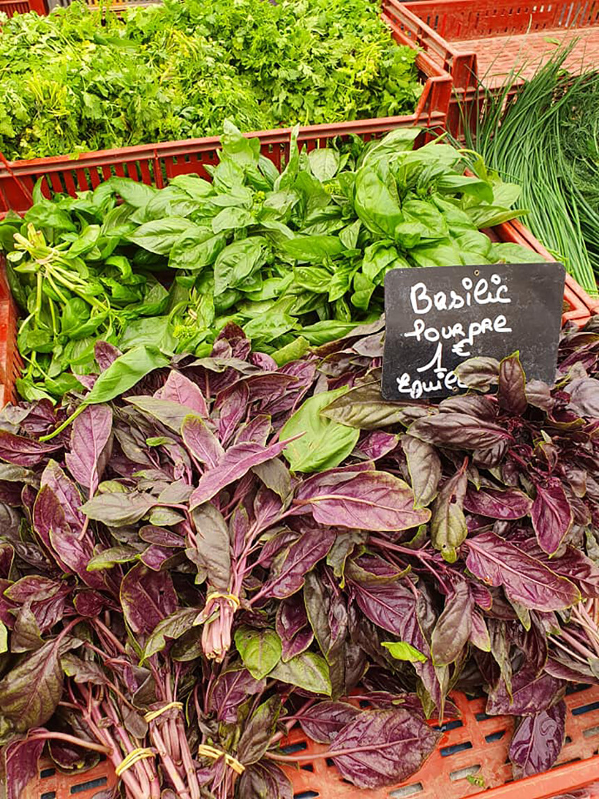 Food Markets Aix-en-Provence Purple Basil Nutrition