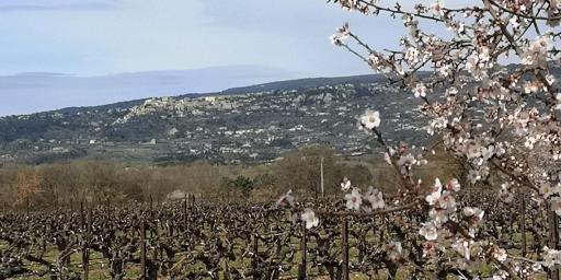 Gordes Hiking Walking Luberon Roussillon