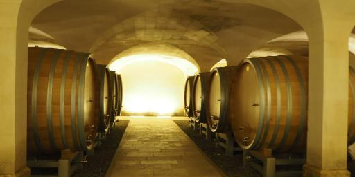 Chateauneuf wine tasting Join Christmas Provence Tour